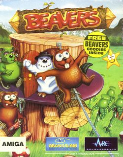 Beavers box scan